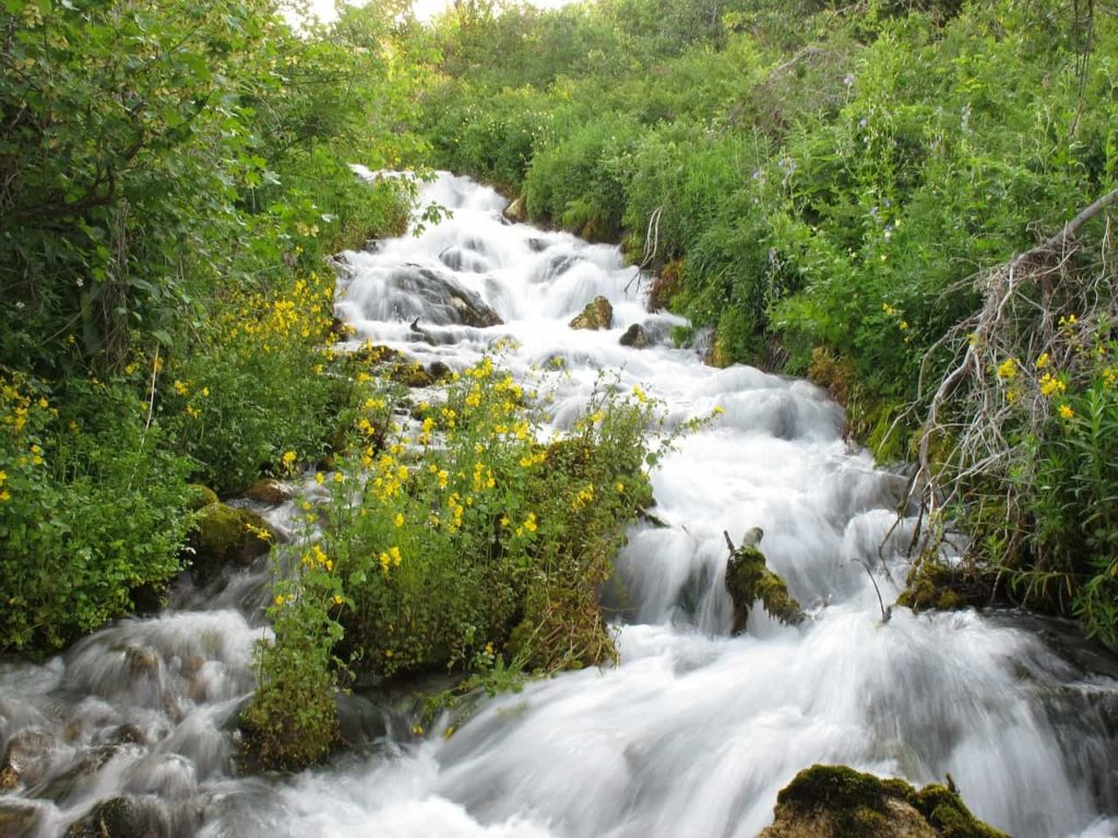 Tipos de Agua - agua natural